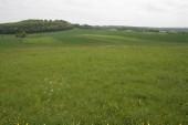 TG 13l Eulenofenkopf FFH-Gebiet Basaltmagerrasen am Rande der Wetterau Trockeninsel (5520-304)