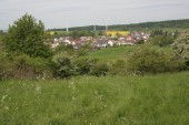 TG 13o Schrammberg FFH-Gebiet Basaltmagerrasen am Rande der Wetterau Trockeninsel (5520-304)