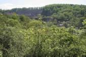 TG 13p Hohenstein FFH-Gebiet Basaltmagerrasen am Rande der Wetterau Trockeninsel (5520-304)