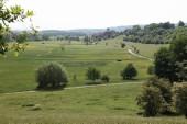 TG 19 FFH-Gebiet Salzwiesen und Weinberg von Selters (5620-301)