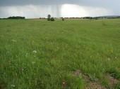 TG 2b Oberau FFH-Gebiet Wälder und Flachwasserteiche bei Lich (5419-303)