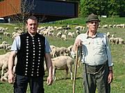 Schäfer Willi und Thomas Etzel mit Schafherde